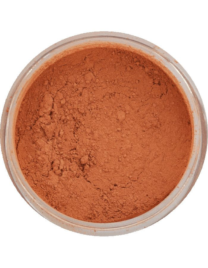 Flow Cosmetics Organic Mineraal Poeder Blusher Lijsterbessen